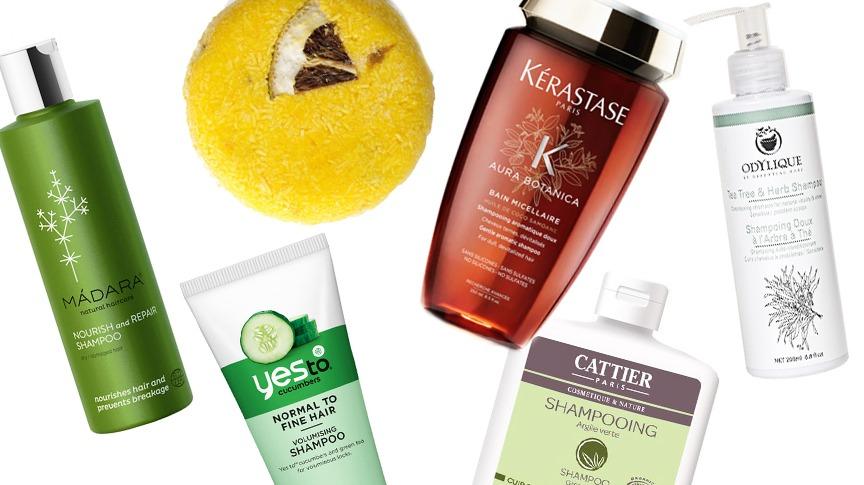 Melhores Shampoos Orgânicos